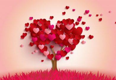 Her Anı Her Yanı Aşk Hatice'm